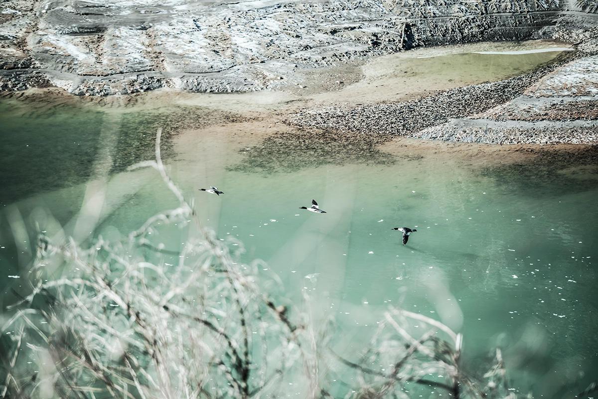 写真展情報「静寂と冬」についてのご案内